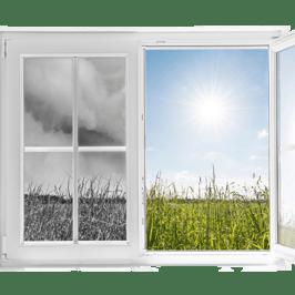 two windows comparison final